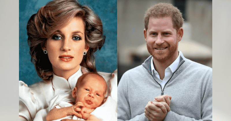 new dad prince harry is so much like diana who would ve been the most incredible grandma says close family aide dad prince harry is so much like diana